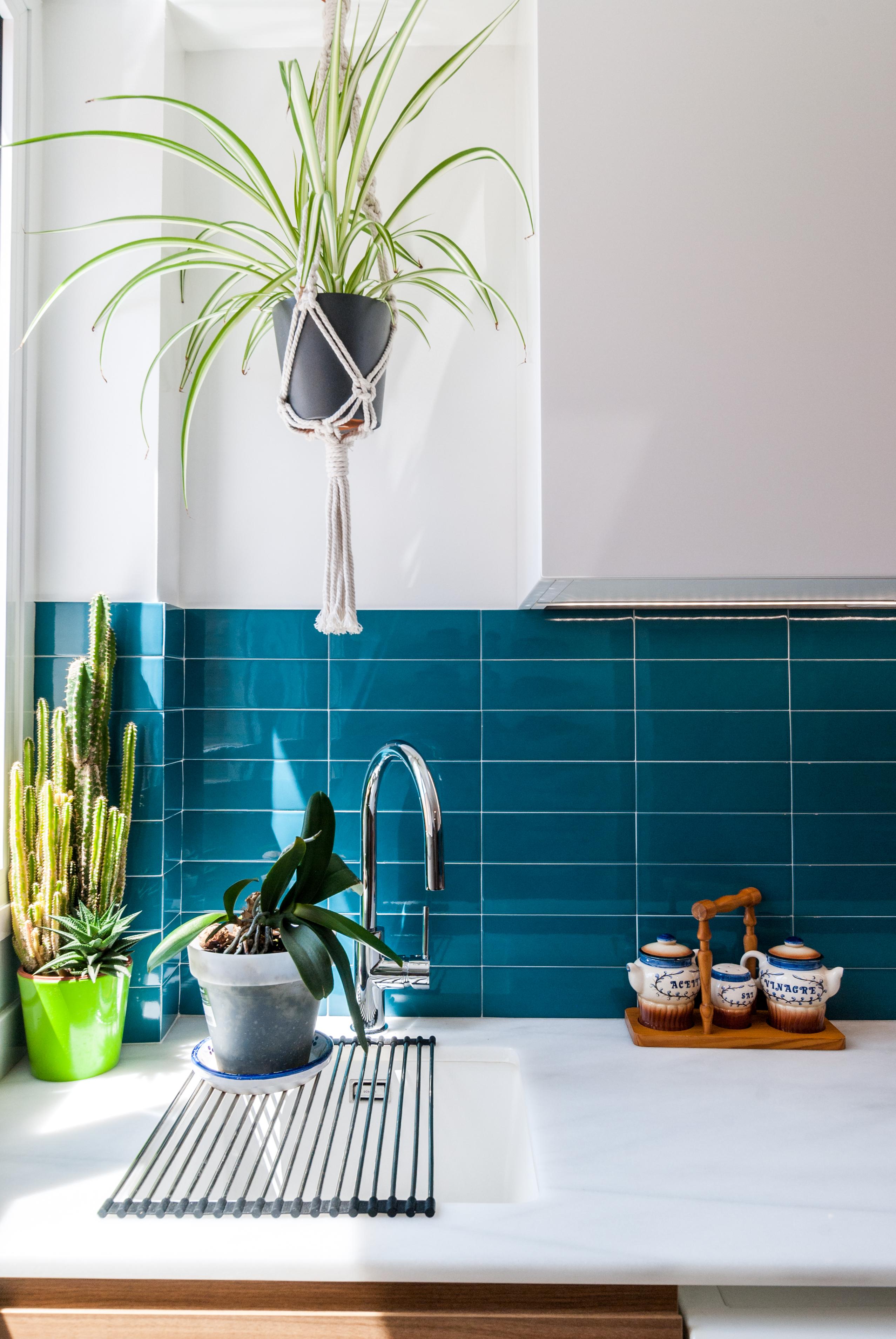 Cocina-plantas-cerámica